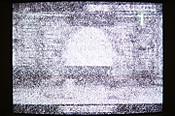 Img_19351
